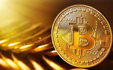 Cara Trading Bitcoin Sampai Bisa Untung Besar